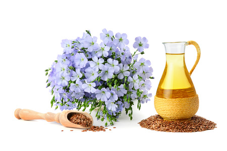 50762225 - seeds, flax oil and flowers isolated on white background